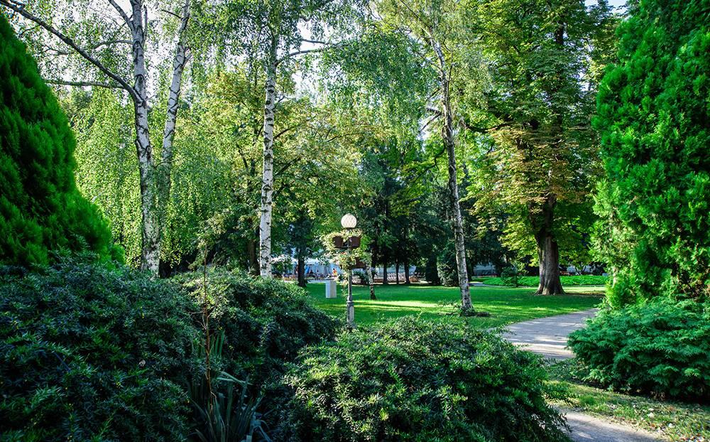 Flora i fauna Zrenjanin