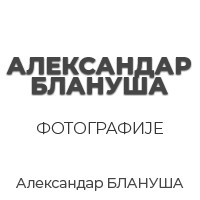 Aleksandar Blanuša Zrenjanin