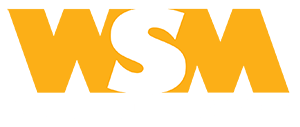 web solution media Zrenjanin