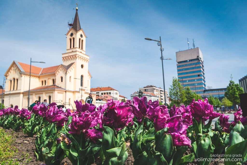 grad zrenjanin proleće 029