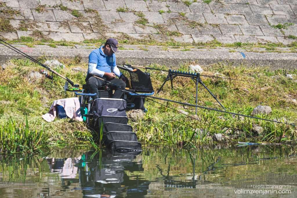 pecanje feeder kup zrenjanin 006