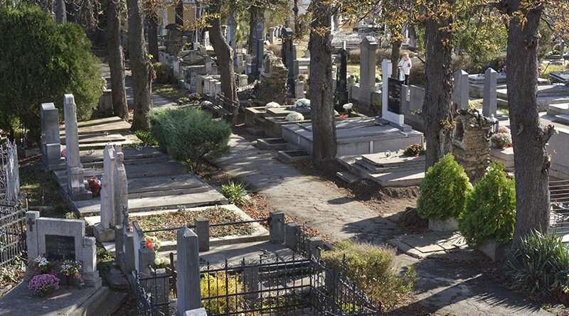 6 7 groblje 800x445